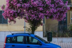 20170618_Agrigento-11