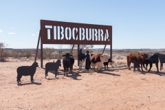 Tibooburra Sign NSW