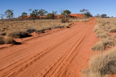 Welford National Park QLD