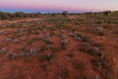2016 Simpson Desert-54